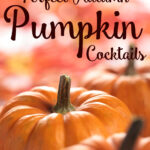 pumpkin cocktails
